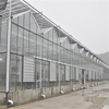 Commercial Greenhouse with Cheap Cooling System Multi-span Agricultural Hydroponic Greenhouse for Vegetables/flowers/fruits/garden/tomato/crop/corn