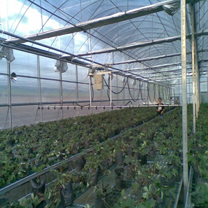 Best quality Cheapest Greenhouse Water fertilizer machine Multi-span Hydroponic Greenhouse for Vegetables/flowers/fruits/garden/tomato/crop/corn