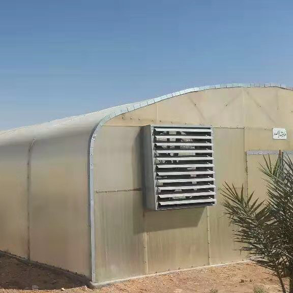 Tunnel Greenhouse in Middle East