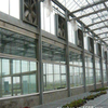 Hot sale Hydroponic greenhouse with high quality Ventilation System Venlo Multi-span Agricultural Greenhouse for Vegetables/flowers/fruits/garden/tomato/crop/corn