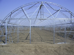 Agricultural/Commercial/Farm/Garden Single Span Poly Film/PC Sheet/Polycarbonate/Glass Covered Greenhouse for Vegetable Tomatoes/Cucumber/Peppers/Strawberry