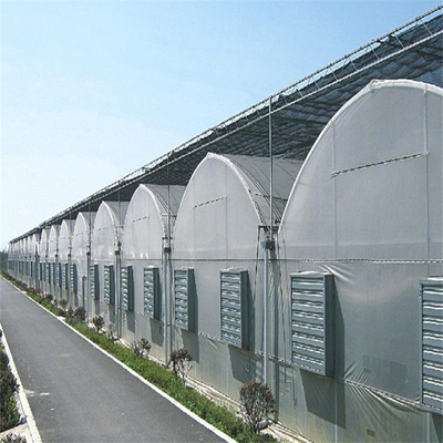 Polycarbonate high quality vegetable greenhouse