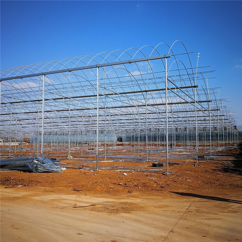 Multi-span Venlo Hydroponic Polycarbonate Steel Structure Agricultural Greenhouse for Vegetables/flowers/fruits/garden/tomato/crop/corn