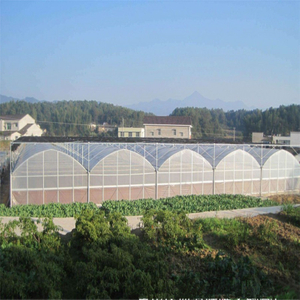 Hot sale Polycarbonate High quality cheap price Hydroponic Agricultural PC Greenhouse for Vegetables/flowers/fruits/garden/tomato/crop/corn