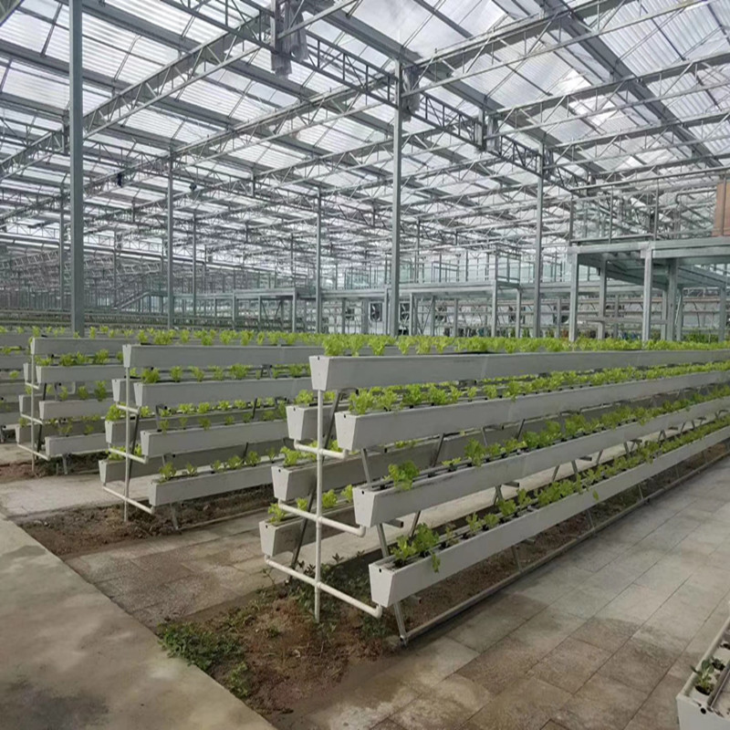 Multi-span High quality Hydroponic system Greenhouse Venlo Agricultural Greenhouse for Vegetables/flowers/fruits/garden/tomato/crop/corn