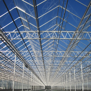 Greenhouse Steel Structure from China Factory