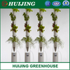 High Quality Agriculture Greenhouse Vertical Hydroponic Growing Systems