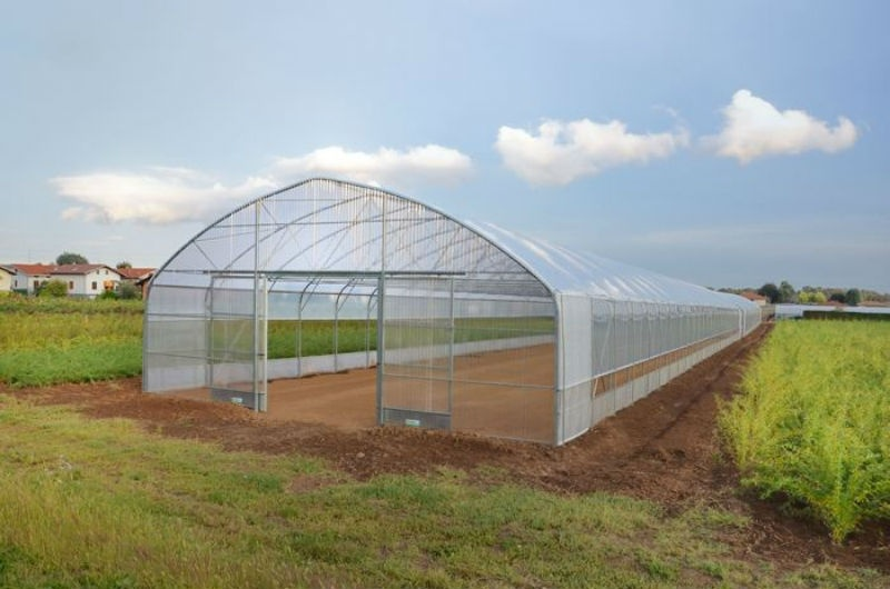 Solar Greenhouse with Soil Back Wall for Winter Vegetables Growing/Gardening Planting
