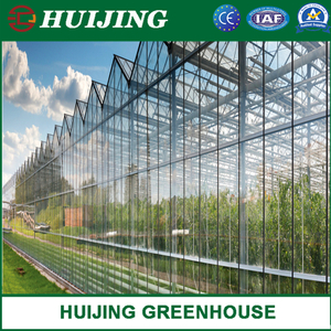 Glass Greenhouse with Hot Galvanized Steel Framework for Agriculture/Stock Farming/Restaurant