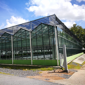 Outside Shading System for Greenhouse with Negotiable Price