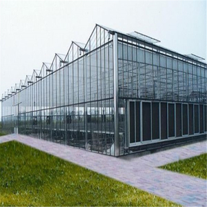Glass Venlo Hydroponic Polycarbonate multi-span Agricultural Greenhouse for Vegetables/flowers/fruits/garden/tomato/crop/corn