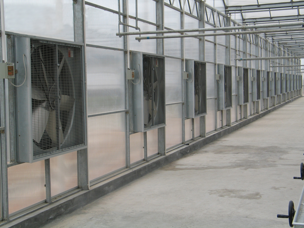 Water Curtain Cooling Pad System for Greenhouse