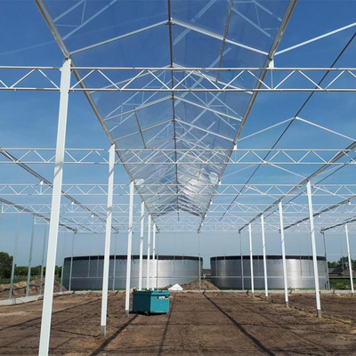 Steel Galvanized Pipe Greenhouse Structure for Greenhouse