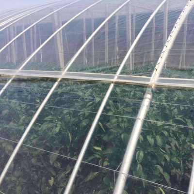 High Quality Greenhouse Covering Materials Film / Polycarbonate / Glass