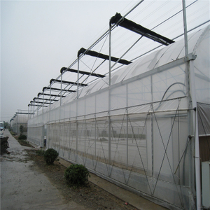 Polytunnel Single-span cheap price Hydroponic Agricultural Film Greenhouse for Vegetables/flowers/fruits/garden/tomato/crop/corn