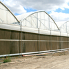 Professional Multi Span Agricultural Polycarbonate (PC) Sheet Greenhouse with Hydroponics/Cooling/Heating System
