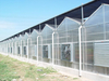 Outside Shading System of Multi Span Greenhouse