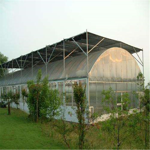 Single-span cheap price Polytunnel Hydroponic Agricultural Film Greenhouse for Vegetables/flowers/fruits/garden/tomato/crop/corn