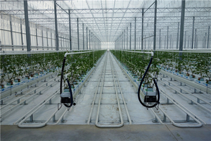 Hot Professional Design Film Greenhouse Heating Systems