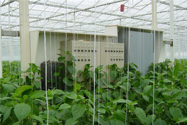 Hot Selling Greenhouse Intelligent Control System